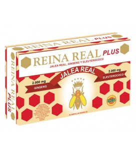 Jalea Reina Real Plus 20 ampollas