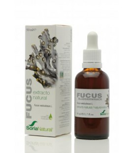 Fucus extracto natural