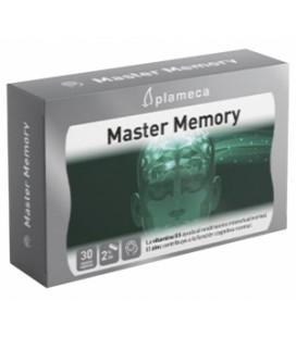 Master Memory